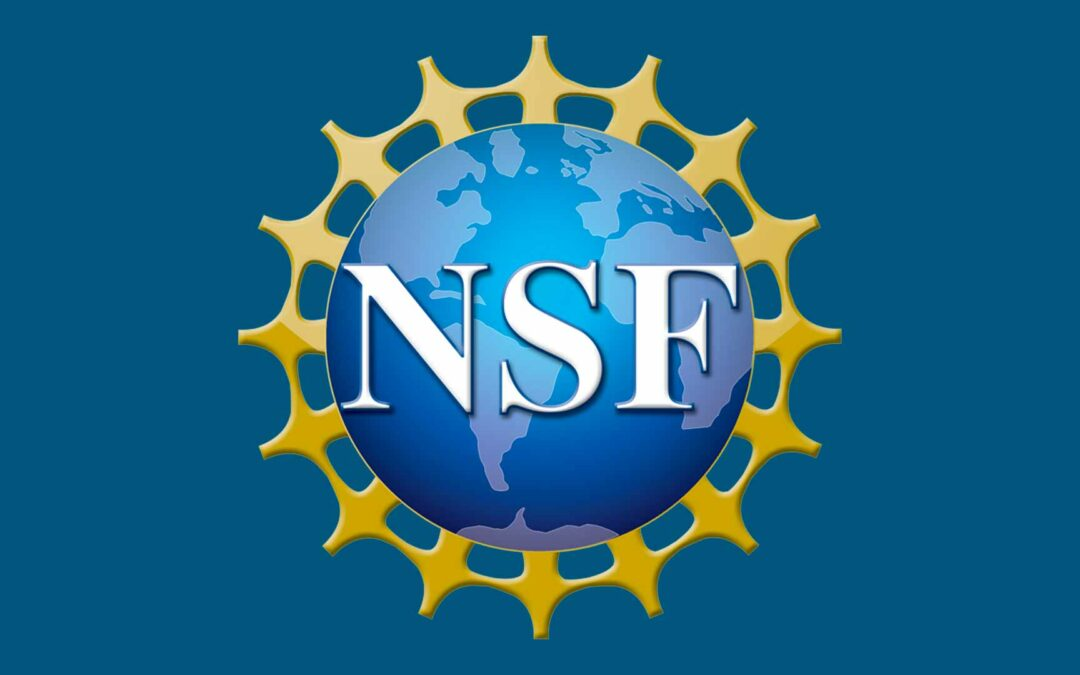 Cornerstone Genomics LLC Awarded $999,594 from the National Science Foundation